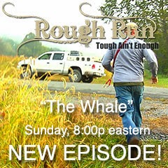"""The Whale""  Coming Sunday"