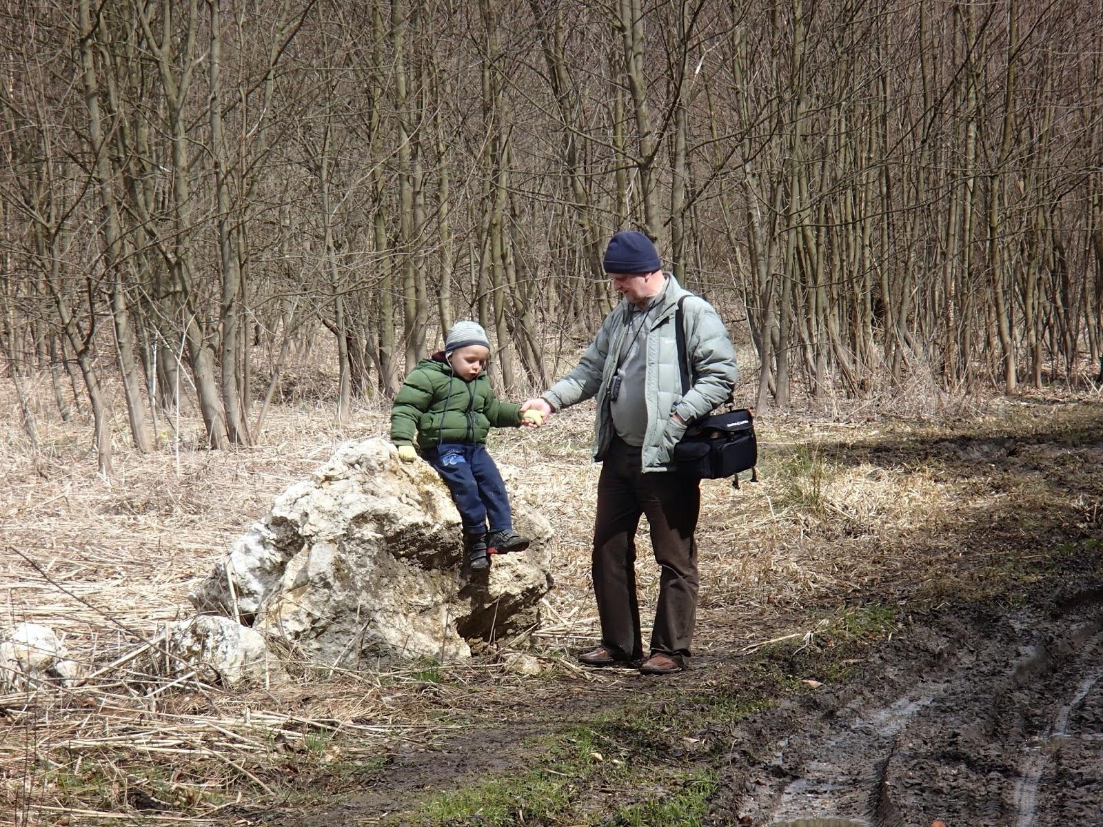 Dolina Będkowska, dolinki podkrakowskie