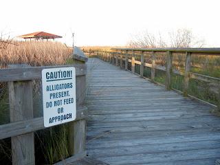 Alligator warning signs at the Brazoria National Wildlife Refuge