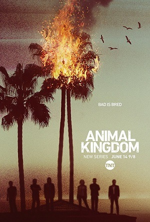Série Animal Kingdom - 1ª Temporada Dublado Torrent 720p / HD / Webdl Download