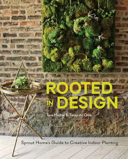 Miss Pippi Reads reviews Rooted In Design