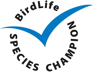 Our Wader Quest project is a BirdLife Species Champion.