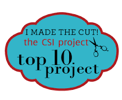 CSI Top Ten Project of the 2010