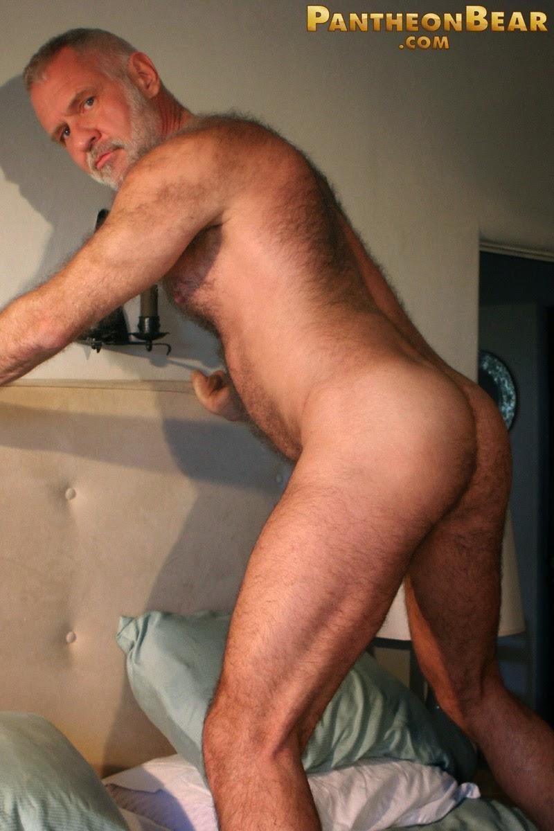 gay bears and boys xxx