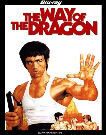 Ejderin Dönüşü: The Way of the Dragon (1972) afis