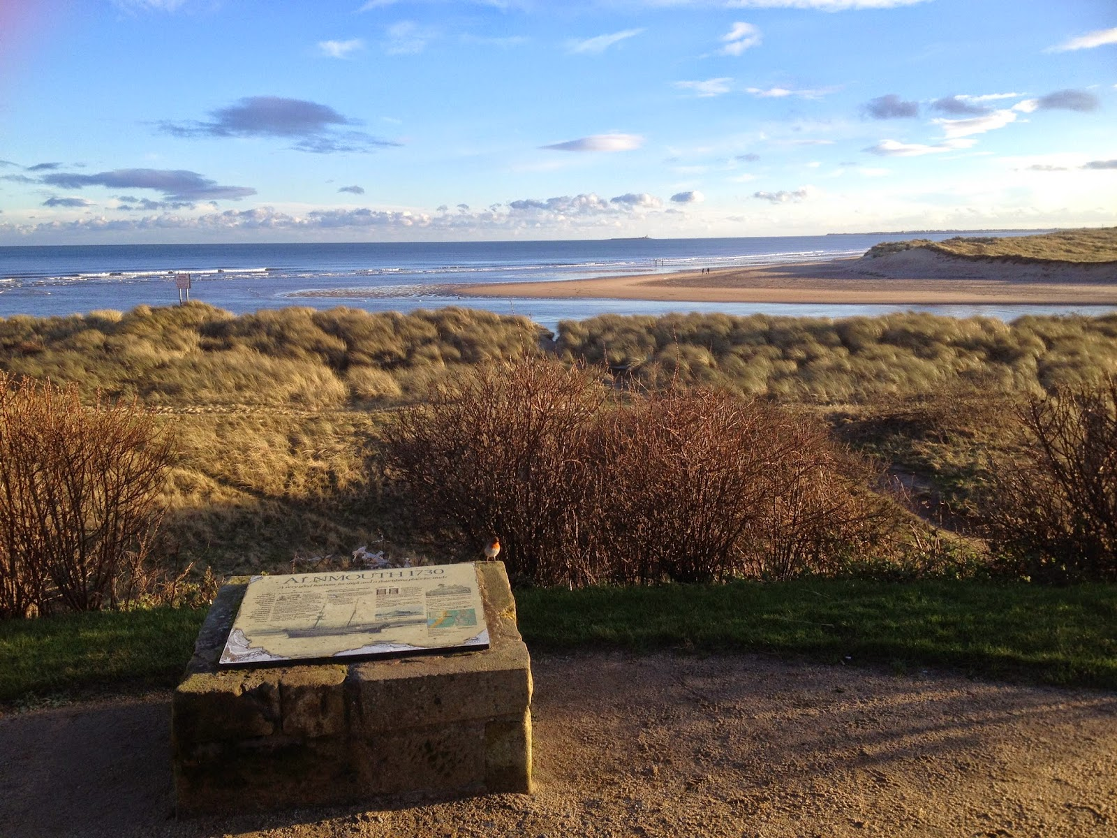 Alnmouth Cottages January 2015