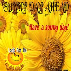Sunny Days Ahead Hunt
