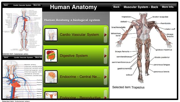 Imu E Learning A Useful Free Human Anatomy App For Your Ipadphonepod