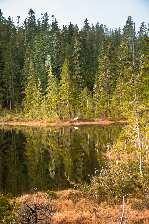 Kludahk Trail water feature