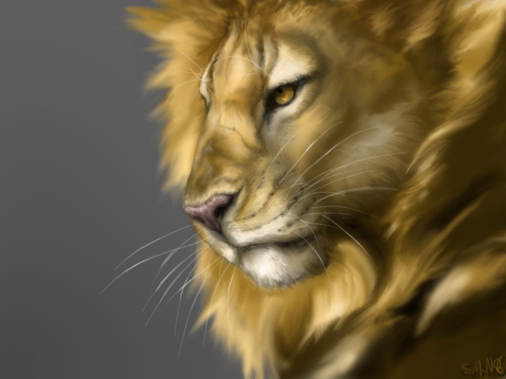 http://3.bp.blogspot.com/-Un-UgAb2Tl8/TgidbbAjZmI/AAAAAAAABHA/fK_cGZsiH48/s1600/Leone.jpg
