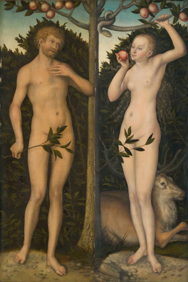 Cranach The Elder Adam And Eve Lucas Cranach The Elder Adam