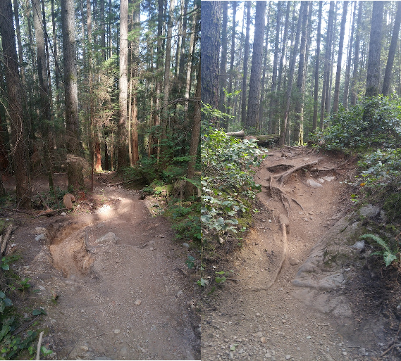 MTB-inflicted Erosion, Environmental & Liability Issues