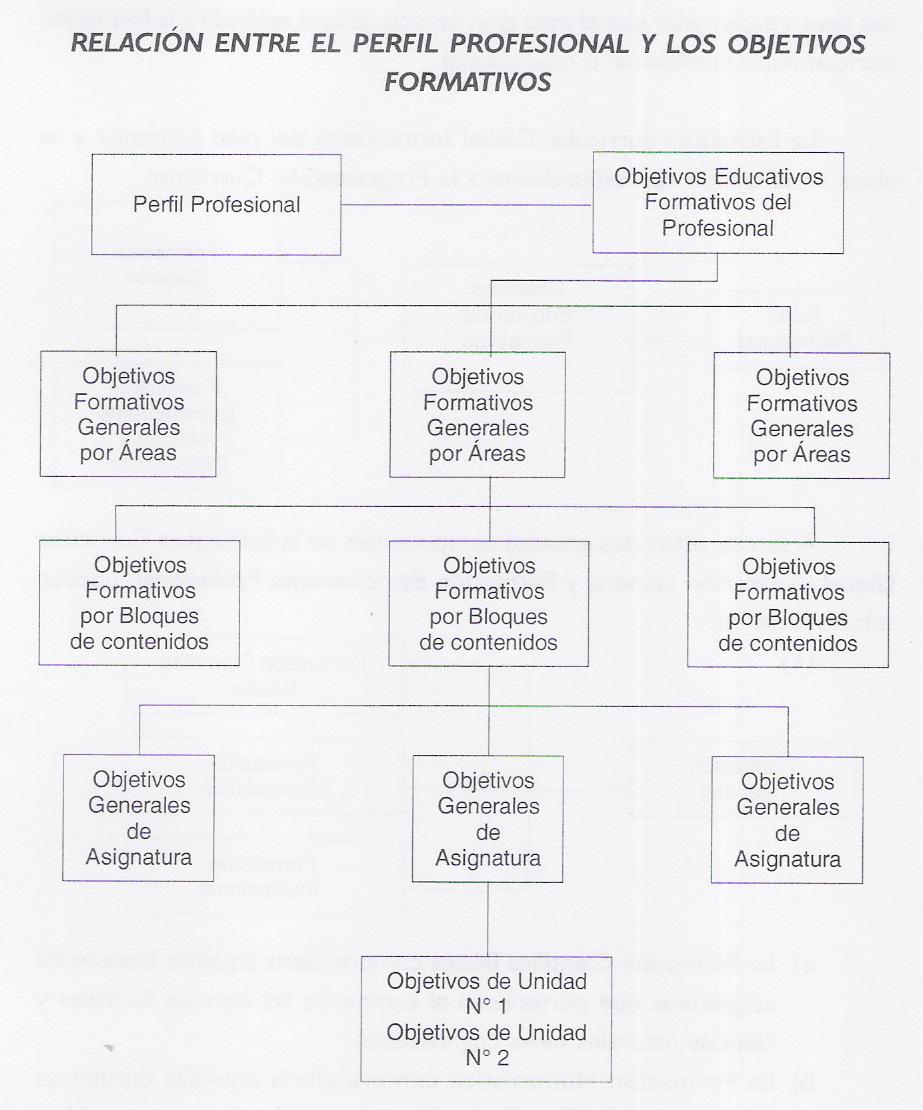 CONSTRUCCIÓN Y EVALUACIÓN DEL PLAN CURRICULAR ©: agosto 2011