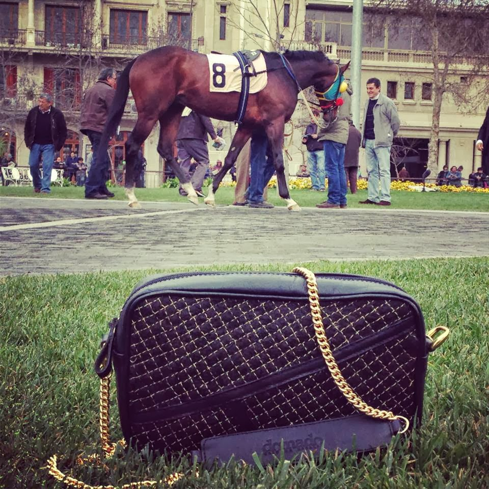 Domado: carteras que usan el crin de caballo como apuesta de vida ...