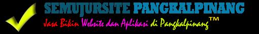 Jasa Aplikasi dan Pembuatan Website Pangkalpinang