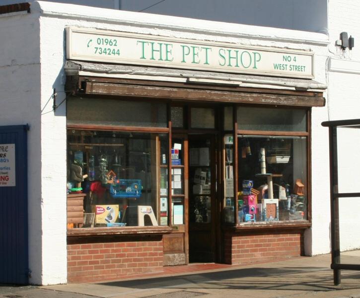 city the pet shop forums myanimelist dog shop 725x600