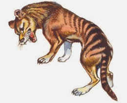 List of animals that have gone extinct in the last 100 years