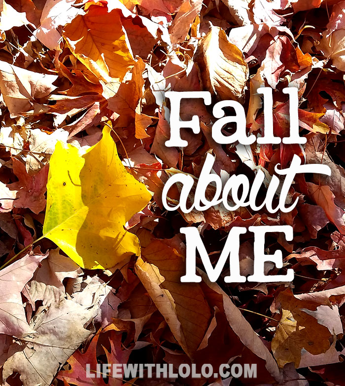 Fall about Me fall leaves