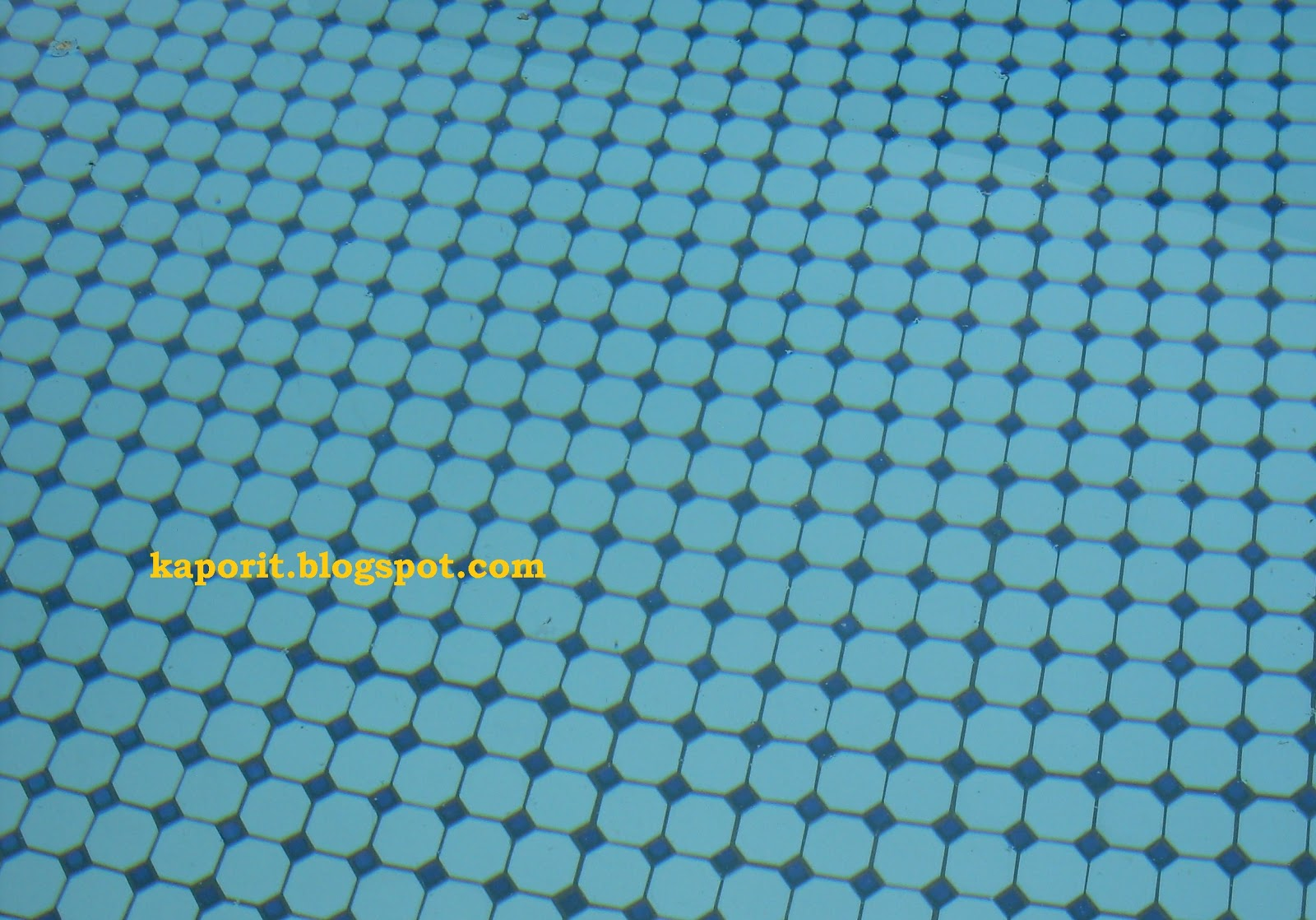2012 Pool Maintenance Klorinator Tempat Melarutkan Kaporit Tips Membangun Kolam Renang