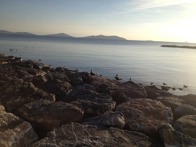 Deniz,Adalar ve Martılar