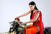 Bindu madhavi latest glam pics-thumbnail-17