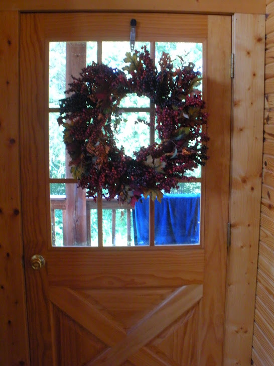 DOOR TO THE BACK DECK..