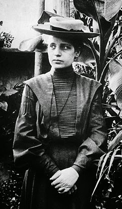 lise meitner essay Lise meitner: a life in physics by ruth lewin sime university of california press, 1997 investigates meitner's life and work, including her vital role in the discovery of nuclear fission classroom activity author jeff lockwood taught high school astronomy.