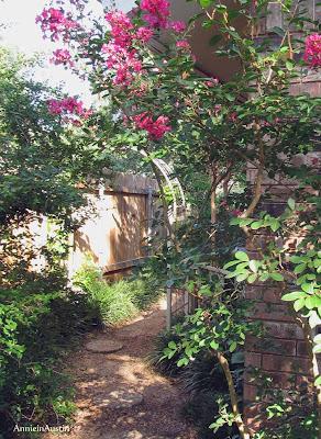 Annieinaustin, Crepe myrtle near arch