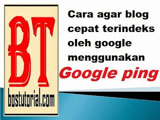 cara agar blog cepat terindeks oleh mesin pencari dengan google ping