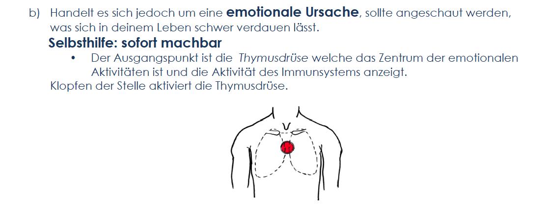 klopfen thymusdrüse