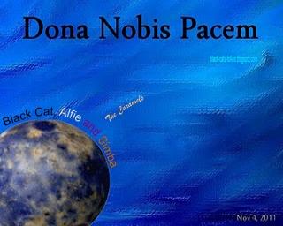 Black Cat Alfie And Simba Dona Nobis Pacem 4th November