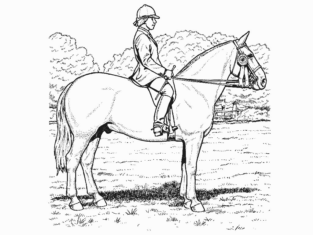 17 Fresh Kentucky Derby Coloring Pages