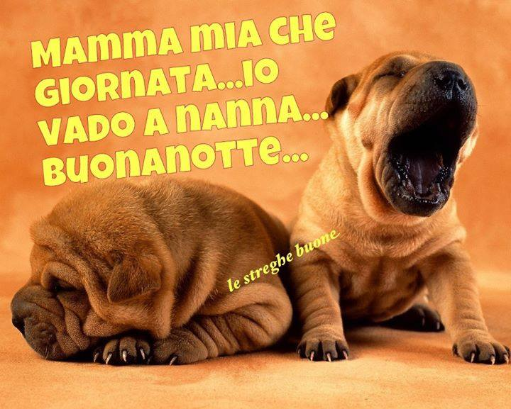 Preferenza Le streghe buone ® the original (pagina facebook): I link della  KI28