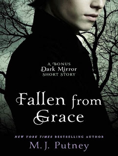 http://www.goodreads.com/book/show/10664634-fallen-from-grace