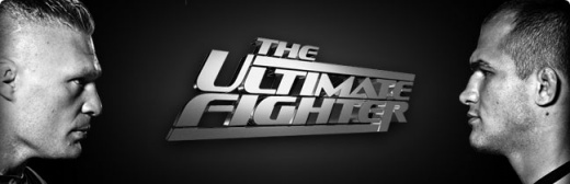 The.Ultimate.Fighter.S13E01.HDTV.XviD-aAF