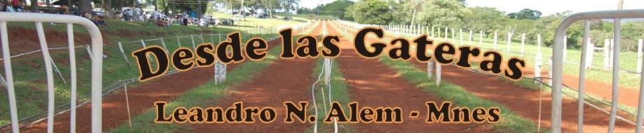DESDE LAS GATERAS TV  - Programas, Resultados, Videos, Informes de Carreras