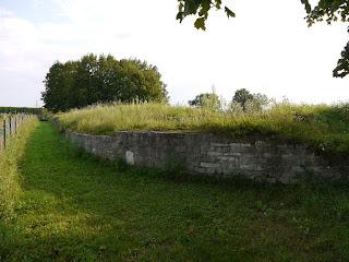 Bild 5: Reste der Ostmauer und der Nordostecke des Kastells Abusina-Eining