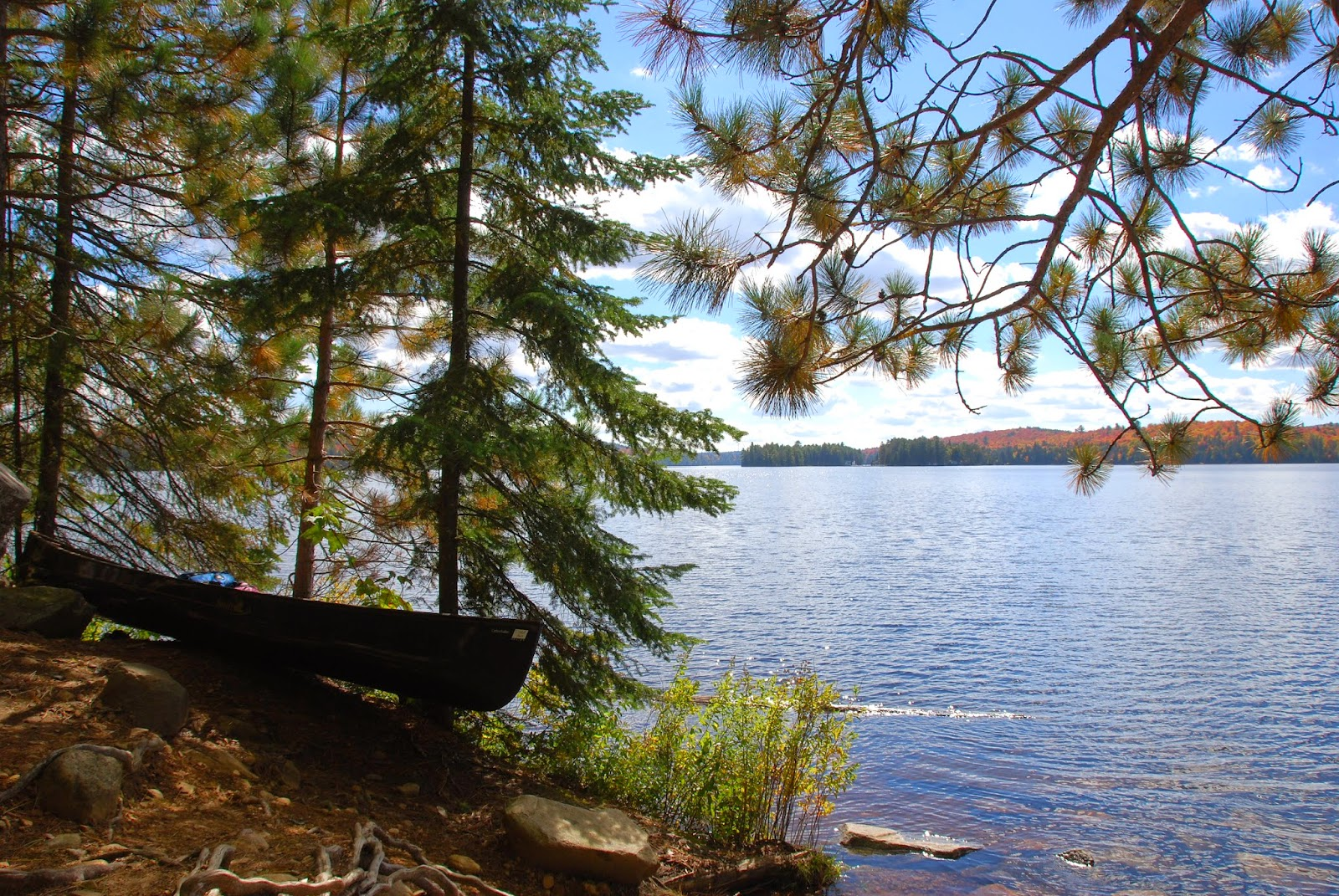 Canoe docked at Hayhurst Point on Canoe Lake