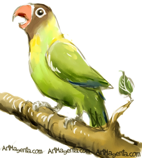 Black-cheeked Lovebird sketch painting. Bird art drawing by illustrator Artmagenta