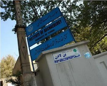 خیابان بن لادن در تهران!؟