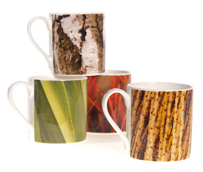 Ella Doran Exclusive Mug Collection for Kew Royal Botanical Gardens
