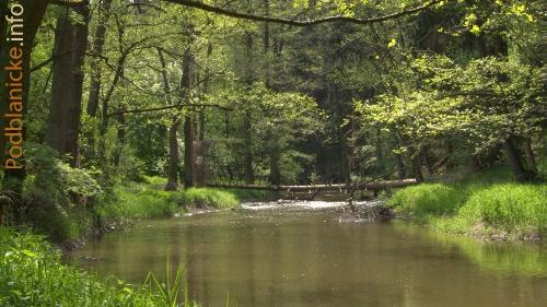 reka-blanice