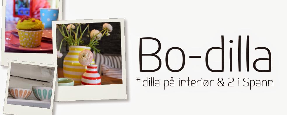 Bo-dilla