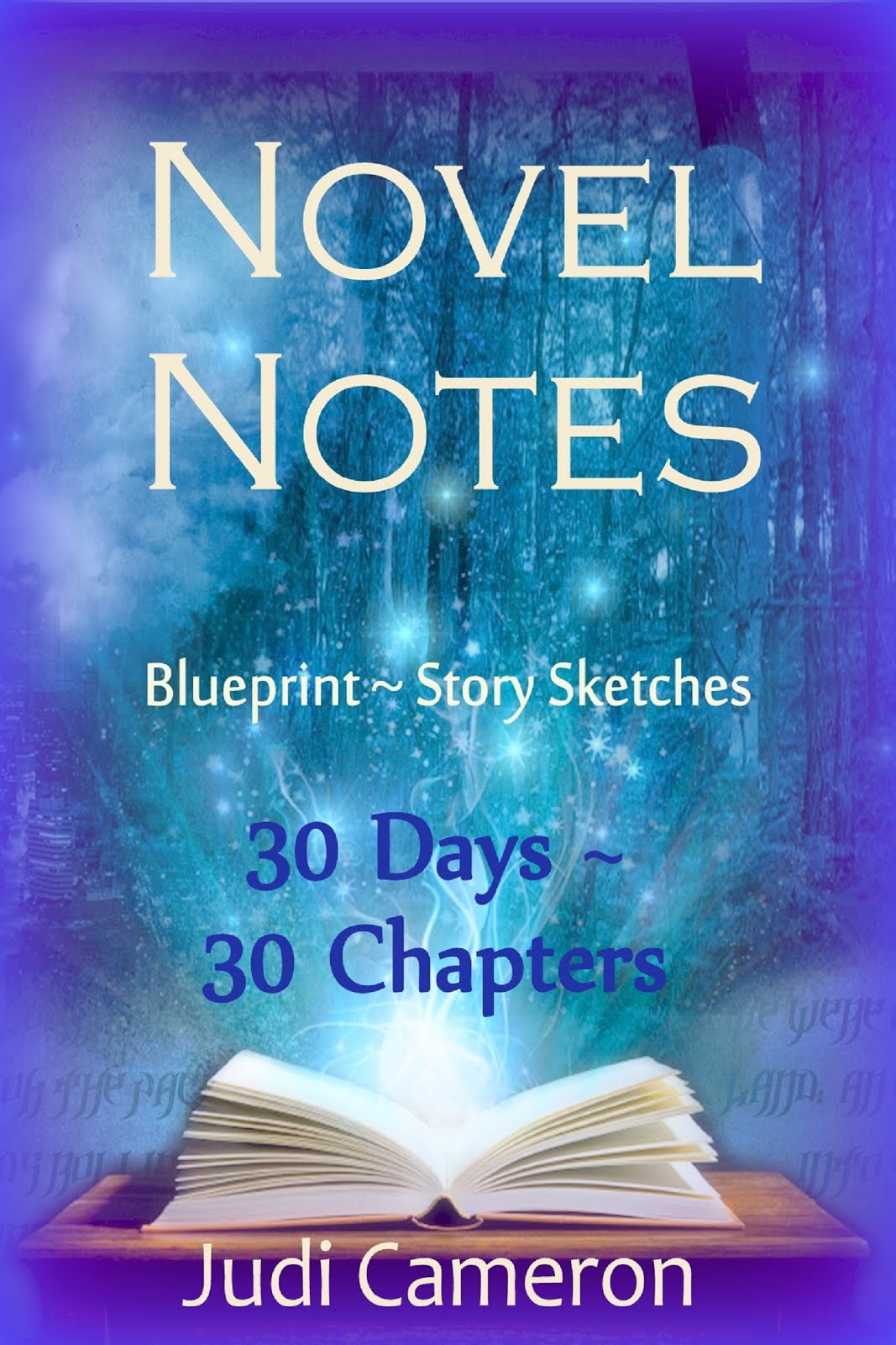 Novel Notes: 30 Days ~ 30 Chapters
