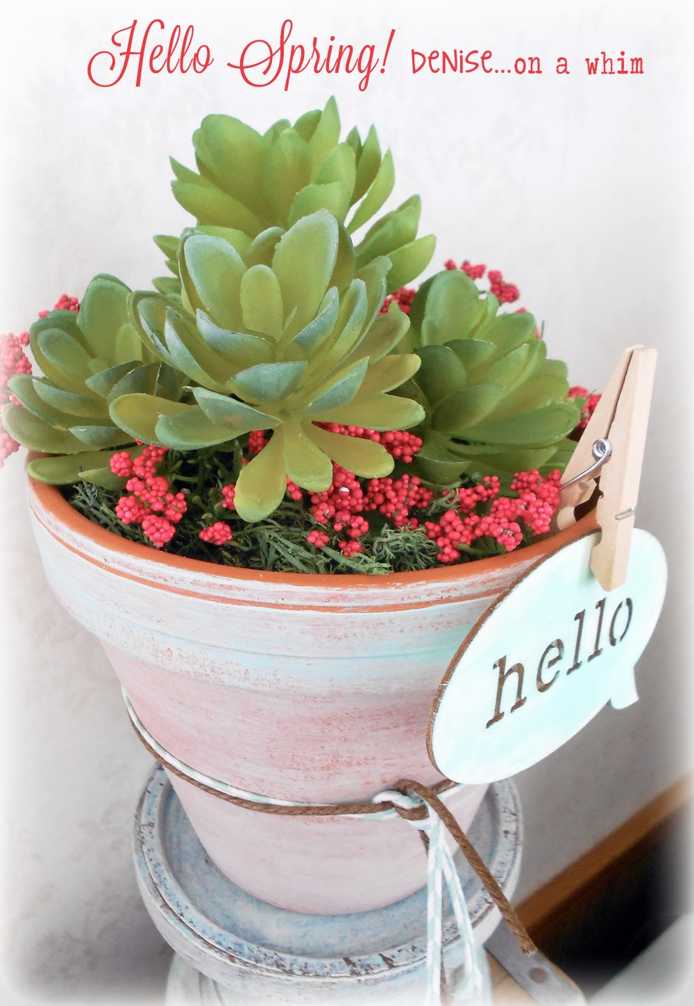 Hello Spring Succulents in a Painted Pot via http://deniseonawhim.blogspot.com