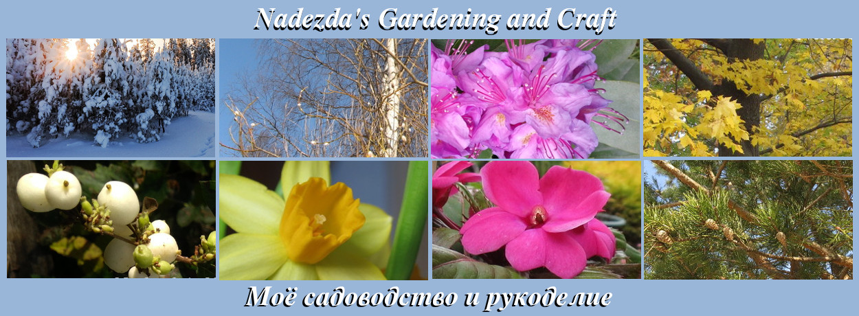 Nadezda's Gardening and Craft