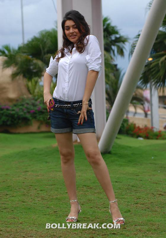 Hansika motwani posing in denim shorts and white shirt hot pic -  Hansika Motwani latest photo