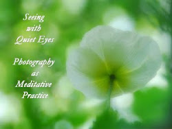 ONLINE PHOTOGRAPHY WORKSHOP: Photography as Meditative Practice
