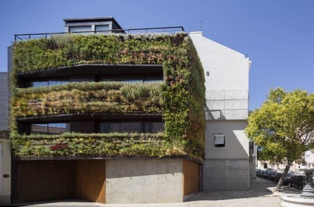 jardim vertical lisboa:Jardim Suspenso: Jardim Vertical.