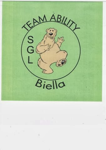 team ability - biella